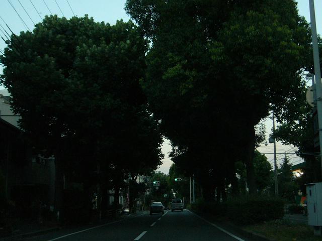 200812_5